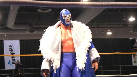 Blue Demon Jr. surveys his domain.