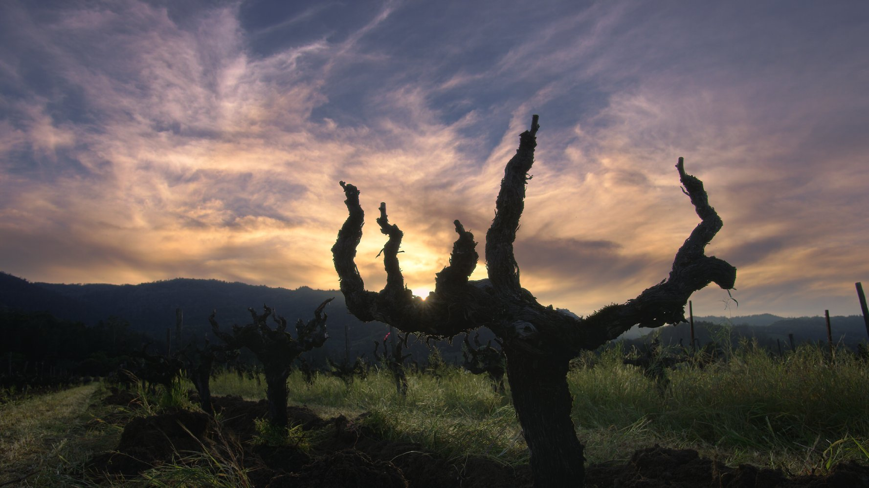 The beauty of the Napa Valley is unquestioned.
